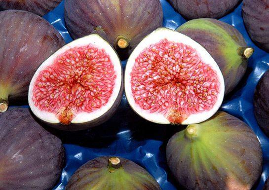 Kur'an-ı Kerim'de geçen besinler nelerdir? Günde 2 siyah incir yerseniz...