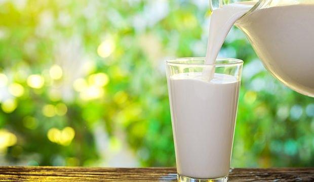 <p><strong>Süt;</strong> Bademcik iltihabında ılık süt oldukça etkili olmaktadır. İltihap ve yaralara iyi gelen süt boğaz şişmesinden korur. Daha etkili olmasını sağlamak için içerisine biraz karabiber ve bir tatlı kaşığı zerdeçal de ilave edebilirsiniz.</p>  <p></p>