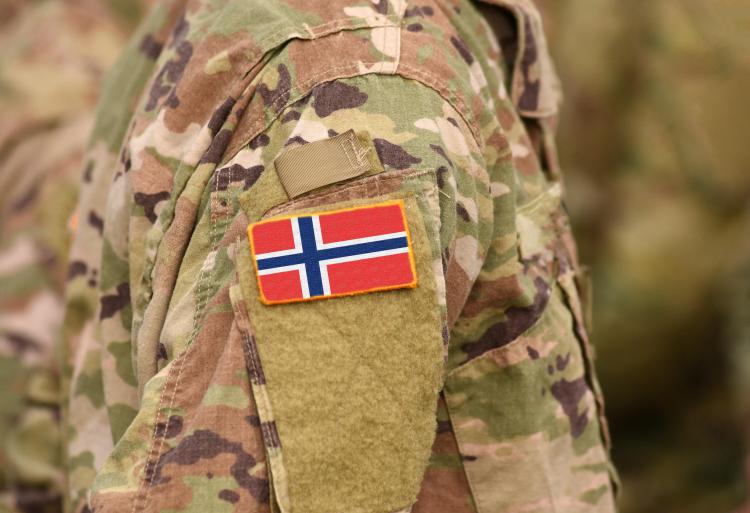 <p><strong>13. Norveç</strong></p>  <p>Toplam nüfus: 5,372,191</p>  <p>Mevcut insan gücü: 2,170,365<br /> <br /> Toplam askeri personel: 64,000<br /> <br /> Aktif personel: 24,000<br /> <br /> Toplam hava gücü: 183<br /> <br /> Savaş tankları: 36<br /> <br /> Zırhlı Savaş Aracı: 777<br /> <br /> Toplam deniz varlıkları: 62<br /> <br /> Savunma bütçesi: 7 milyar dolar</p>