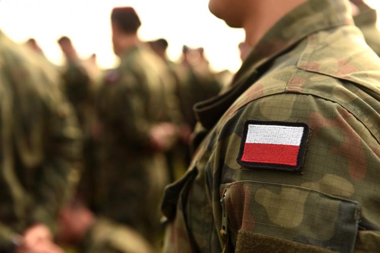 <p><strong>9. Polonya</strong></p>  <p>Toplam nüfus: 38,420,687</p>  <p>Mevcut insan gücü: 18,826,137<br /> <br /> Toplam askeri personel: 105,00<br /> <br /> Aktif personel: 105,00<br /> <br /> Toplam hava gücü: 469<br /> <br /> Savaş tankları: 1,100<br /> <br /> Zırhlı Savaş Aracı: 2,411<br /> <br /> Toplam deniz varlıkları: 83<br /> <br /> Savunma bütçesi: 9,3 milyar dolar</p>