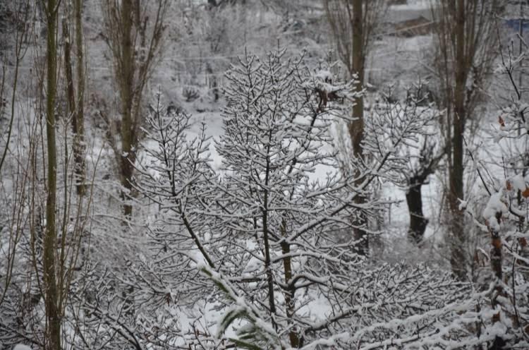 """<p>Gükçe, """"Kaç gündür kar yağmasını bekliyorduk, geçen sene çok erken yağmıştı okullar tatil oldu, çok sevindik. Sabah kalktığımda her yer beyazdı, güzel bir tatil oldu bizim için"""" diye konuşt</p>"""
