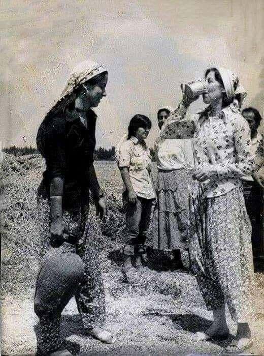 <p>Aslen Selanik'ten Şebinkarahisar'a yerleşmiş bir ailenin çocuğudur. Babası Namık Zeki Aral, annesi Zahide Aral'dır. Ankara Lisesi ve Robert Koleji mezunudur.</p>
