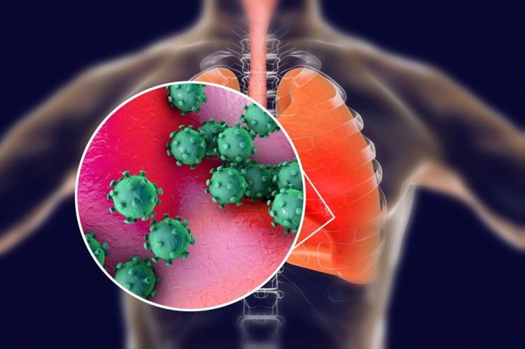 <p><strong>COVİD-19'un anlamı nedir?</strong><br /> </p>  <p>CO-Corona, Vİ-Virüs, D-Disease (Hastalık) ve 19 ise 2019'da bulunduğunu ifade etmektedir. Kısaca COVİD-19 corona virüse bağlı hastalığı anlatmak için kullanılmaktadır.</p>  <p></p>