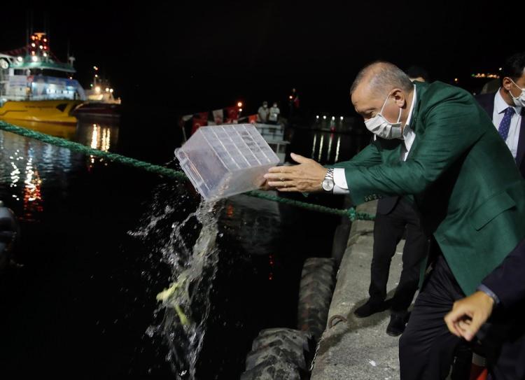 Başkan Erdoğan'ın satışa çıkardığı bir kasa balık rekor fiyata satıldı