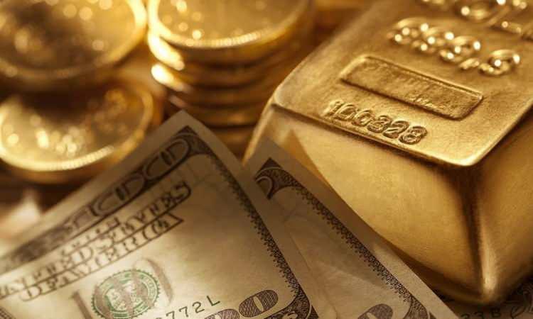 Dolar 8 TL'yi aştı, Gram altında yükseliş sürüyor