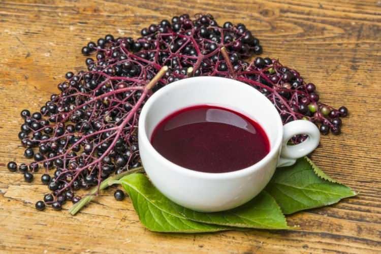 <p>Mide ağrısı tedavisinde mürver çiçeği çayı ağrı kesici özelliğinin yanında tedavi amaçlı da kullanılır</p>