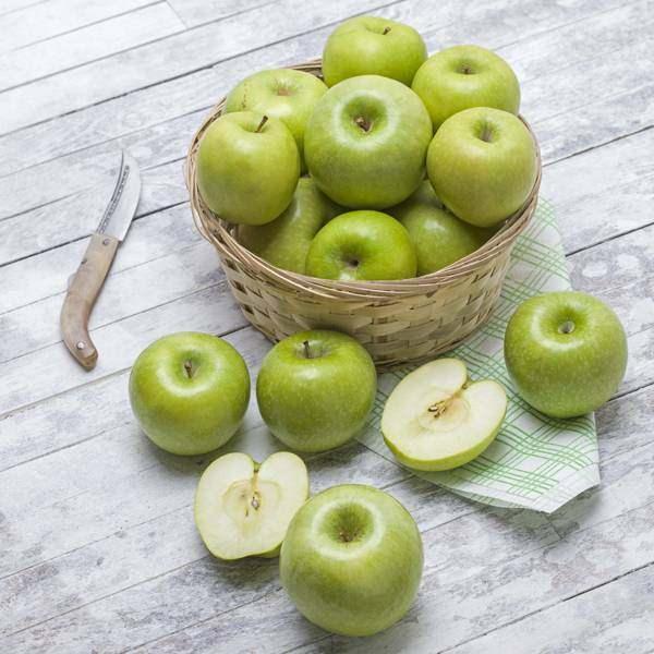 <p><strong>Yeşil elma</strong><br /> <br /> Bağırsak sisteminin korunmasında faydalıdır ve posadan zengindir. Kolesterol düşürücü etkisi vardır. Kan şekerini kontrol altında tutar ve vücut direncini arttırır. Kas ve eklem ağrılarının azalma sına yardımcı olur.</p>