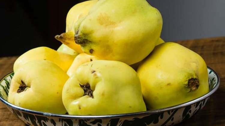 <p><strong>Ayva</strong><br /> <br /> Sarı meyvelerden olan armut ve ayva da vücuda zindelik vererek yorgunluğu azaltır. İçeriğindeki antioksidanlarca vücut direncinin güçlenmesinde etkilidir.</p>