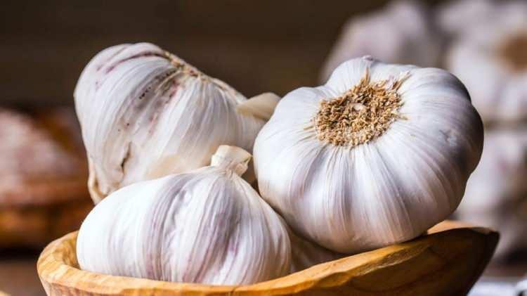 """<p><strong>Hap gibi sarımsak yutmak faydalı mı?</strong></p>  <p>Sarımsağı yalnızca ezme, çiğneme gibi işlemler sonucunda içindeki enzimler aktifleşir, """"allicin"""" isimli sarımsağın aktif ve yararlı öğesi oluşur. Bu nedenle hap gibi sarımsak yutmanın bir anlamı yoktur. Sarımsağın faydalı özelliklerinden yararlanmak için çiğ olarak yemeklere eklenmeli ve çiğnenerek, doğranarak ya da ezilerek tüketilmelidir. Sarımsak yutmanın bilindiği gibi bir faydası yoktur.</p>"""