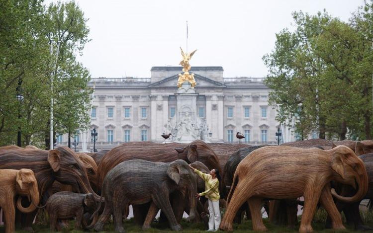 Londra'da Buckingham Sarayında 'gerçek boyutlu filler' sergisi