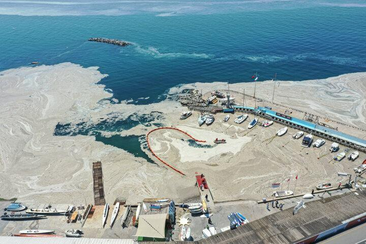 <p>Kadıköy Caddebostan Sahili'nde Çevre ve Şehircilik Bakanlığı ekipleri tarafından müsilaj (deniz salyası) temizleme çalışmalarına başlandı.</p>  <p></p>