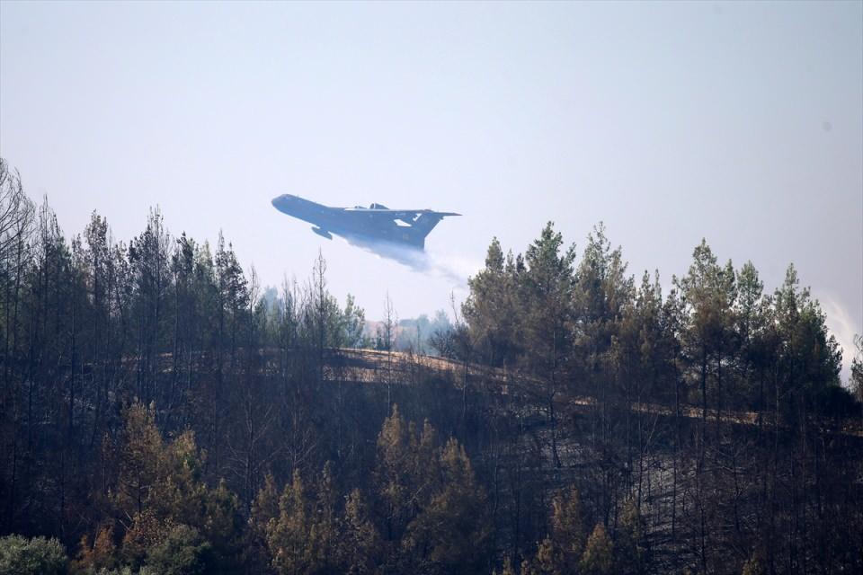 <p>Adana'nın Aladağ ilçesinde iki gün önce çıkan orman yangını, havadan ve karadan müdahaleyle kontrol altına alınmaya çalışılıyor.<br /> </p>