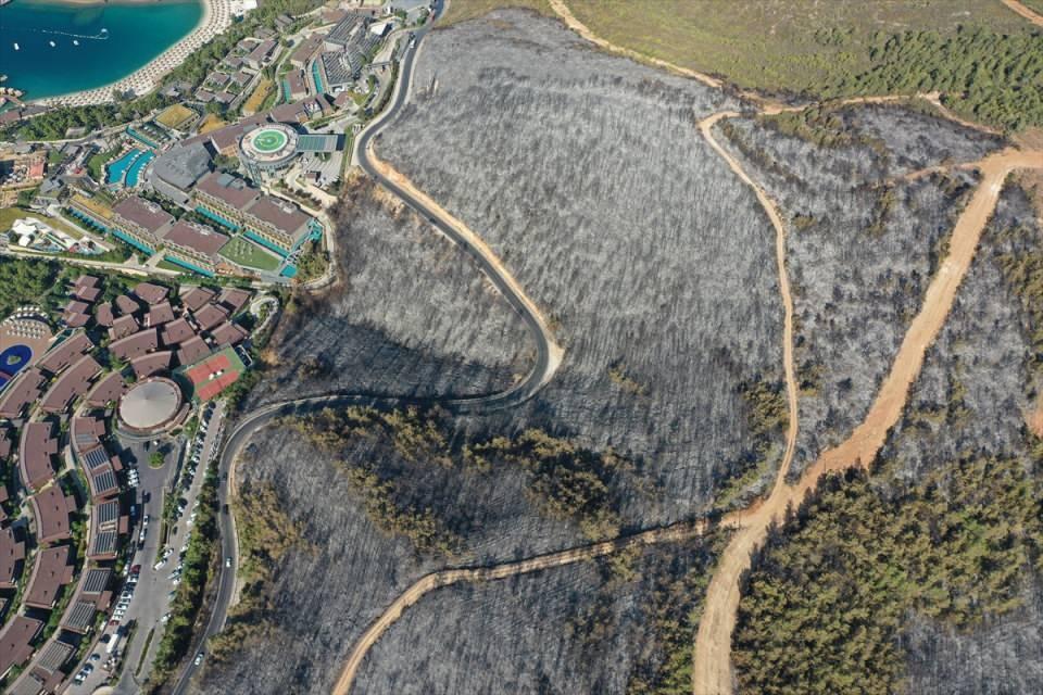 <p>Havadan çekilen görüntülerde yangının zarar verdiği alanda ekiplerin karadan soğutma çalışmasını sürdürmesi yer alıyor.</p>
