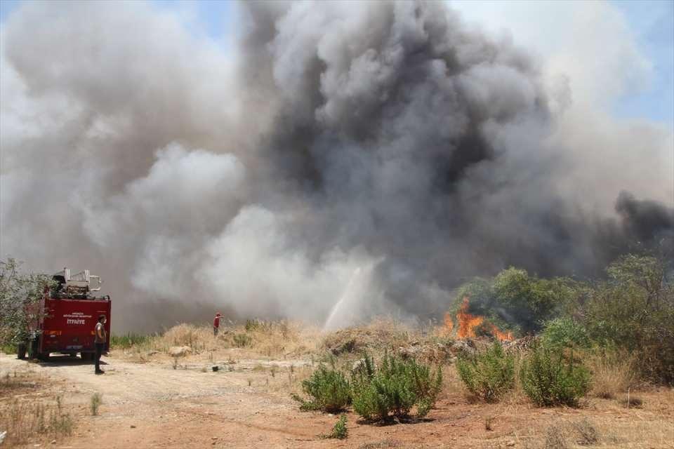 <p>Manavgat ilçesi Yeniköy Mahallesi'nden başlayan yangın, rüzgarın da etkisiyle hızla yayıldı.</p>  <p></p>