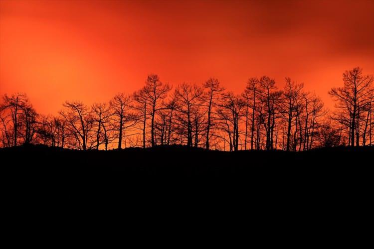 <p>Türkiye, birçok noktada orman yangınlarıyla mücadele ediyor. Havanın kararmasıyla yangınların boyutu bir kez daha gözler önüne serildi. Marmaris'ten gelen fotoğraflar ise tüyler ürpertti.</p>  <p></p>