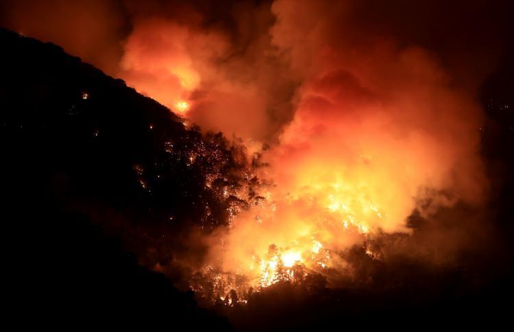 <p>Yangına Orman Bölge Müdürlüğü ekipleri, Muğla Büyükşehir Belediyesi ekipleri, emniyet güçleri ile Türk Silahlı Kuvvetleri mensupları müdahale ediyor.</p>