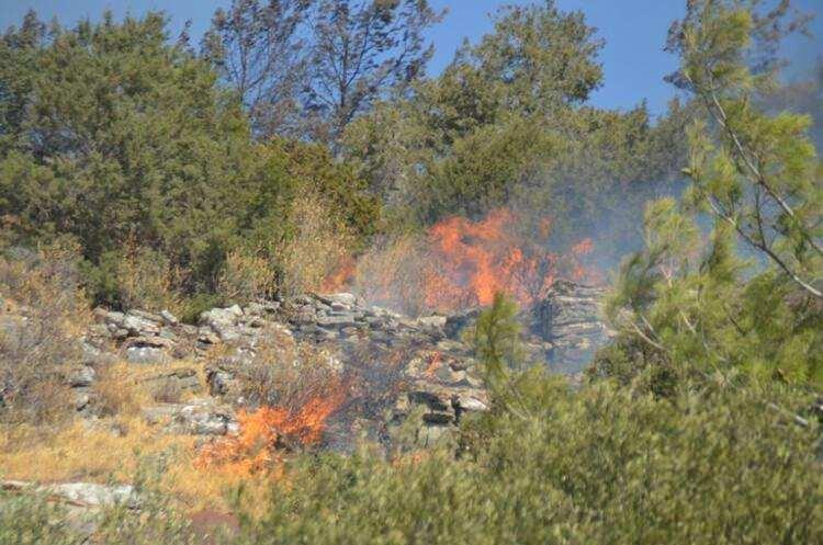 <p>'ALLAH'IM ATEŞİ SÖNDÜR'</p>  <p>Çöplü-Matap bölgesinde çıkan yangın ise zaman geçtikçe büyüyor. Yangının en çok büyüdüğü yerlerden olan Göğü Mahallesi'nde zeytinlik, tarım arazileri ve ormanlar alevler içinde küle döndü. Yol kenarında kepçeler, yangının diğer mahallelere sıçramaması için çam ağaçlarını kesiyor. Dozerlerle, iş makinelerine yol açılıyor.</p>