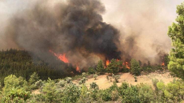 <p>Vatandaşlar yangın bölgesine su ayran ve yiyecek getirerek ekiplerin ihtiyaçlarını karşılamak için birbirleri ile yarıştı. Milas ilçesinde ormanlık alanda çıkan yangında alevler Bodrum ilçesinin Gökpınar Mahallesi'ne ulaştı.</p>