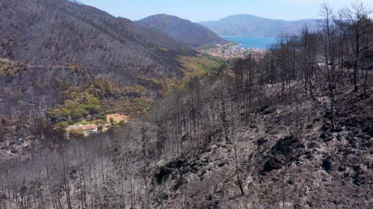 <p>Türkiye'de orman yangınları ile mücadele devam ederken yangın sonrası felaketin boyutu gözler önüne seriliyor.</p>