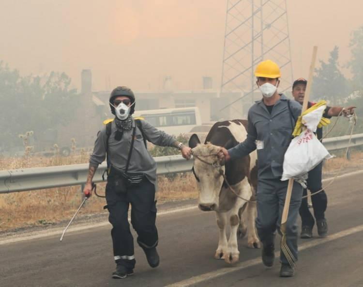 <p><strong>TOPYEKÜN MÜCADELE</strong></p>  <p>Antalya'nın Manavgat, Gündoğmuş, Akseki ve Alanya ilçelerindeki 13 mahallede yangın devam ediyordu. Manavgat'ta, alevlerin tehdit ettiği Sırtköy Mahallesi, Gündoğmuş'ta da Ümütlü ve Senir mahalleleri tahliye edildi. Ümütlü Mahallesi'ne, duman nedeniyle mahsur kalan 10'u itfaiye personeli 20 kişi kurtarıldı. Akseki ilçesi Kepezbeleni Mahallesi'ndeki yangın, kontrol altına alınmaya çalışılıyor. Gülen Dağ'daki yangın da devam ediyor. 4 ilçede yangından 50 bin hektar alan etkilendi.</p>