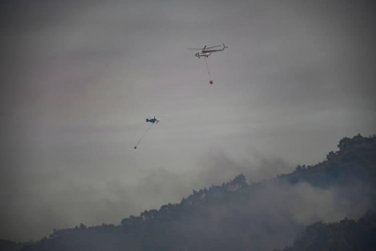 <p>Marmaris'te yangın sürüyor. Turunç Mahallesi'nde tur tekneleriyle tahliye yapıldı. Köyceğiz'de yangın sürerken, Seydikemer ilçesindeki yangın kısmen kontrol altına alındı.</p>
