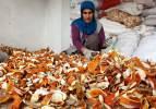Yılda 300 ton portakal kabuğunu ekonomiye kazandırıyorlar