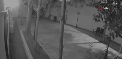 Çalacak bir şey bulamayan hırsız bıldırcın çaldı
