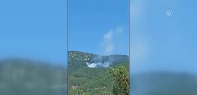 Adana Kozan ve Sarıçam'da orman yangını