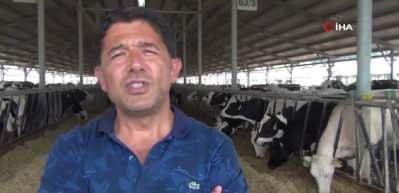 Türkiye'ye örnek olacak modern süt sığırcılığı tesisi
