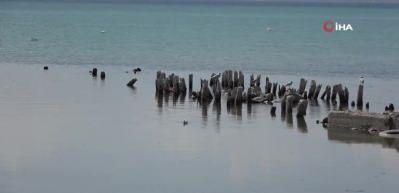 Van Gölü'nde ürküten görüntü! Suyun çekilmesiyle yüzyıllık iskele ortaya çıktı