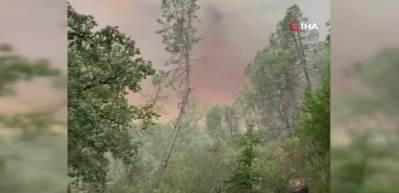 ABD'de söndürülemeyen orman yangınları nedeniyle olağanüstü hal ilan edildi