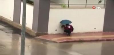 Antalya'da yürek ısıtan görüntü: Islanmasın diye şemsiyesiyle sokak köpeğinin başında bekledi