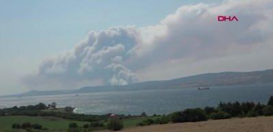 Çanakkale'de orman yangını! Bakan'dan açıklama!
