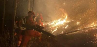 Çin'de orman yangınında itfaiye ekibi mahsur kaldı: 19 ölü