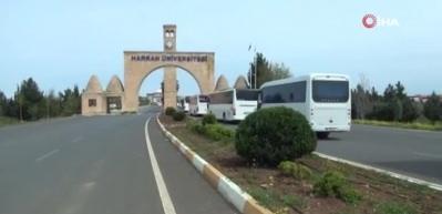 Dışişleri Bakanı Yardımcısı Kıran: Cezayir'deki vatandaşlarımız ülkeye döndü