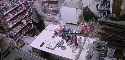 Dükkana dana girdi! Bakkal sahibi ne yapacağını şaşırdı