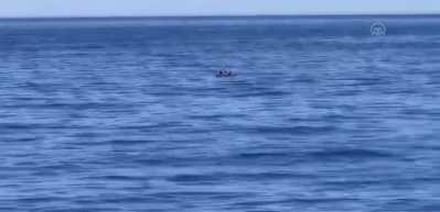 Ege Denizi'nde botları batan 27 sığınmacı kurtarıldı