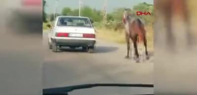 Tepki çeken görüntü! İple tuttuğu atı, otomobilin peşinde böyle koşturdu