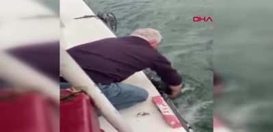 Tekne kaptanı Haliç'e düşen köpeği böyle kurtardı
