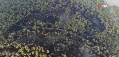 Heybeliada'da yanan ormanlık alanın son durumu görüntülendi