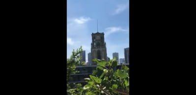 Hollanda'daki kilisenin çanları 'uzun ince bir yoldayım' türküsünü çaldı