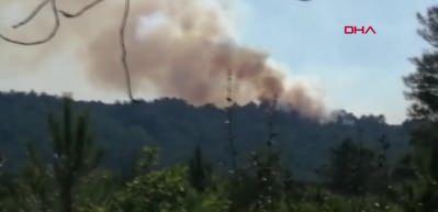 İstanbul'da Aydos Ormanı'nda 4 faklı noktada yangın çıktı