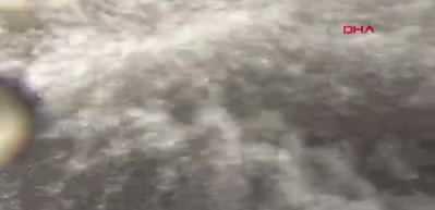 Kars'ta tatlı su kefallerinin büyüleyen yolculuğu