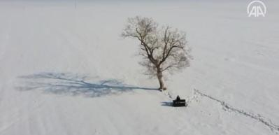 'Kusursuz kulak' Bager, karla kaplı Muş Ovası'nda piyano çaldı