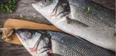 Levrek nasıl temizlenir? Balık açarken hangi bıçak kullanılır?