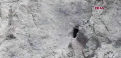 MSB görüntüleri paylaştı: Bir inleri daha yok edildi