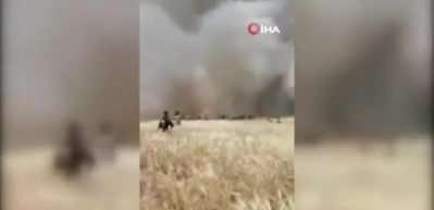 Terör örgütü YPG/PKK, Suriye'de çiftçilerin mahsullerini yaktı