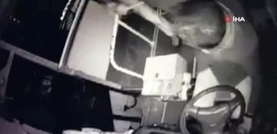 Otobüs şoförü yolcusu tarafından bıçaklandı... O anlar kamerada