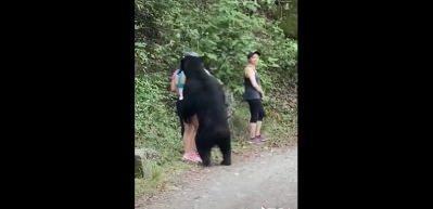 Parkta karşılarına çıkan ayı ile selfie çektiler