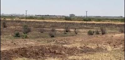 PKK'dan kalleş tuzak! Tek tek imha edildiler